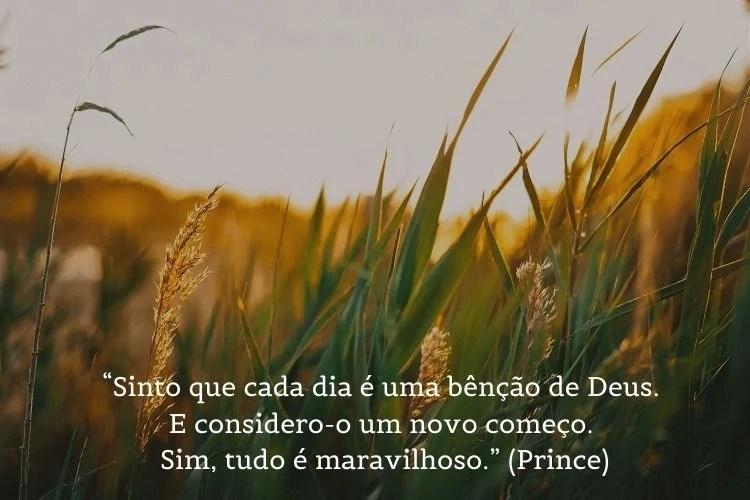 citação de bom dia Prince