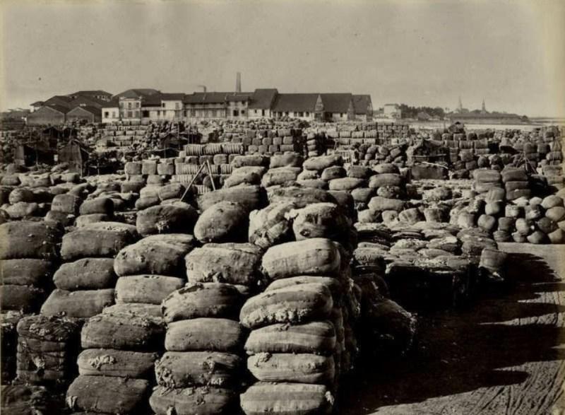 Carregamento de algodão em um porto na Índia, c. 1860.