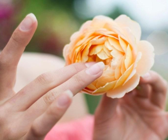 Dedos na flor.