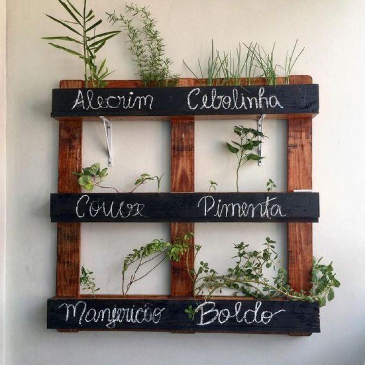 Pallet com plantas.