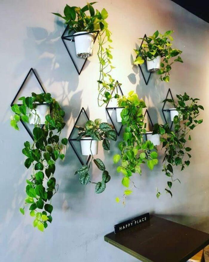 Sete vasos de plantas pendentes na sala de jantar.