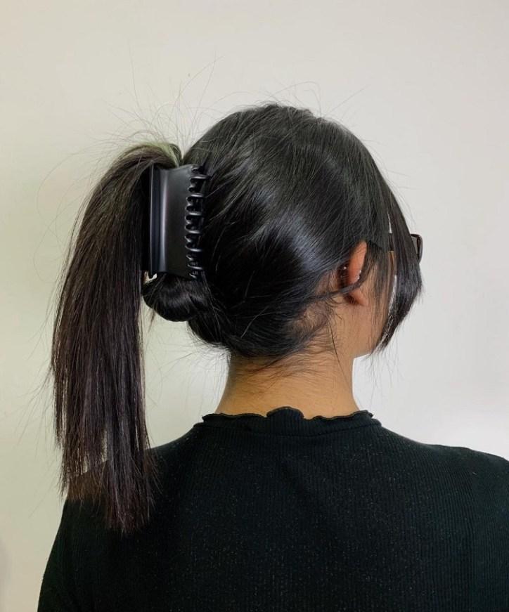 Piranha de cabelo em rabo de cavalo