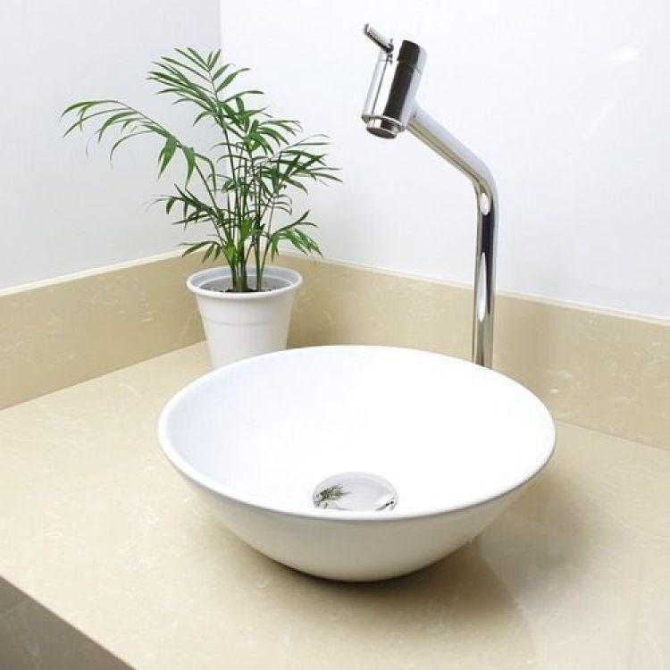 Balcão de banheiro com planta.