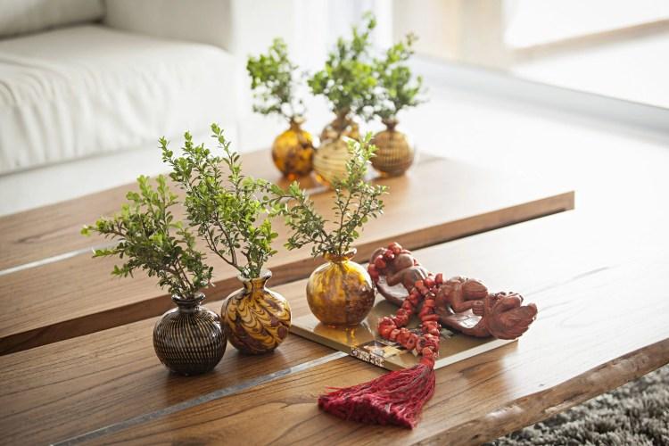 Mesa de centro de madeira com seis vasos.