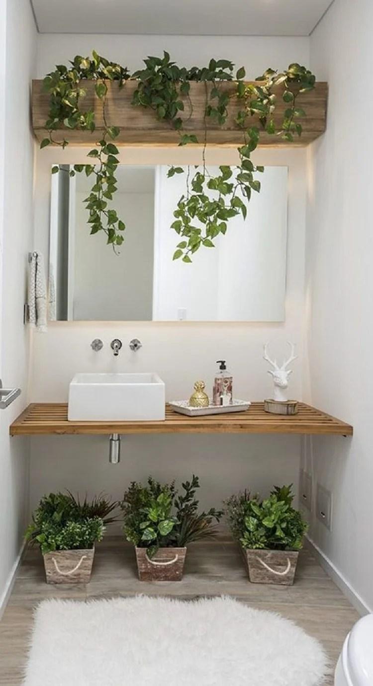 Plantas em prateleiras e no chão.