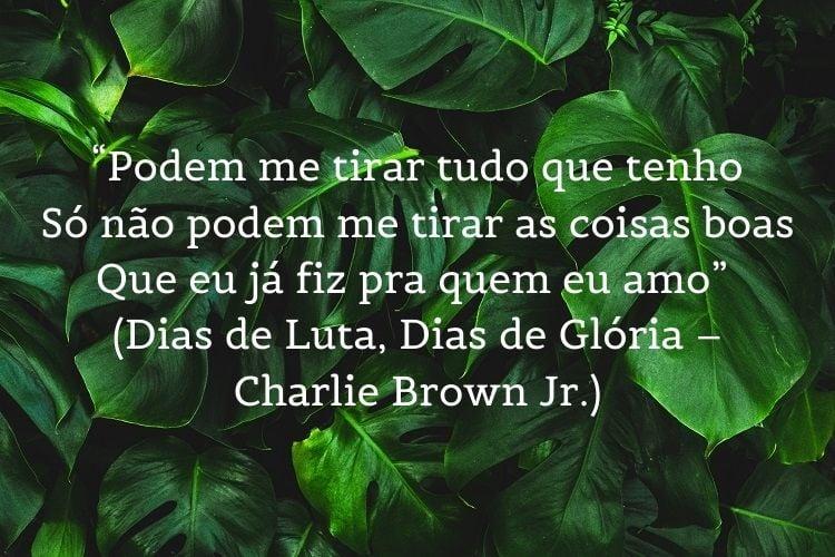 trecho de música do Charlie Brown Jr. sobre reflexão