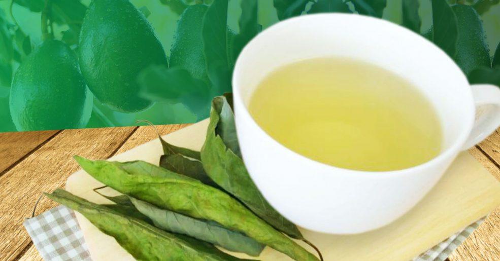 Xícara de chá de folhas de abacate sobre a mesa com folhas ao lado para decorar