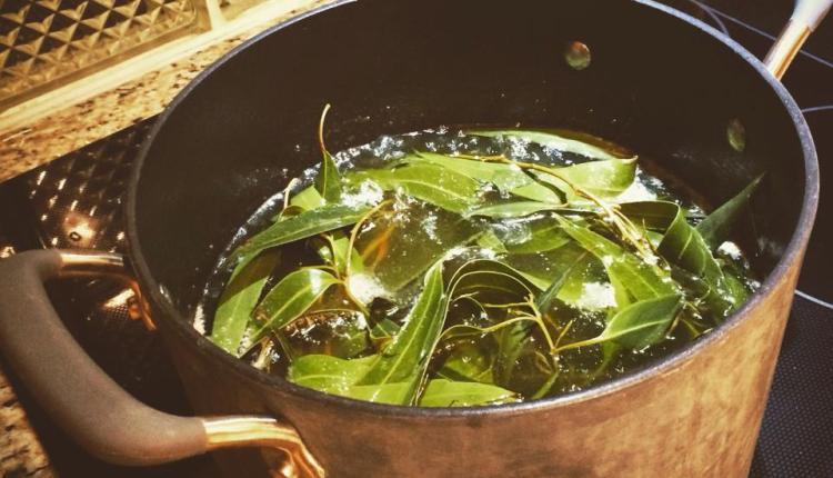 Panela com folhas de eucalipto imersas em água