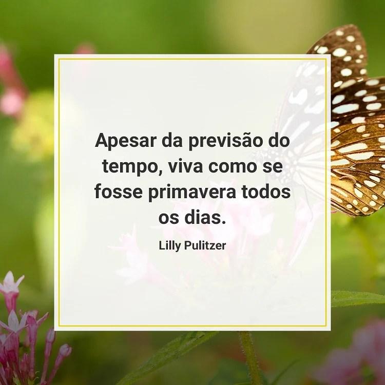 citação sobre a primavera com foto de borboleta ao fundo