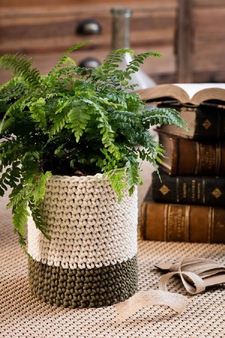 Foto de planta samambaia com cachepô de crochê