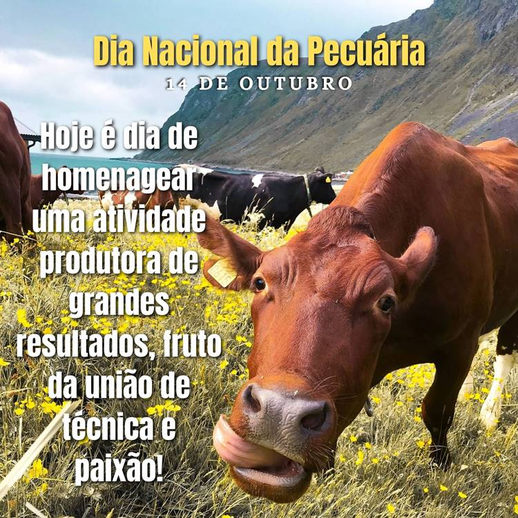 Foto com frase para o Dia Nacional da Pecuária.