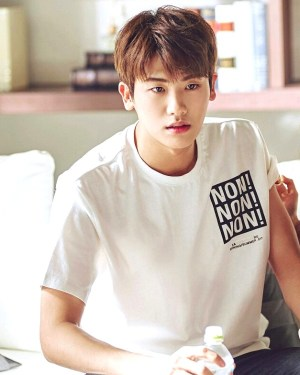 Non Non Non T-Shirt | Ahn Min Hyuk – Strong Woman Do Bong Soon