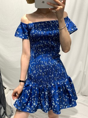 Mina Flower Print Blue Dress (12)