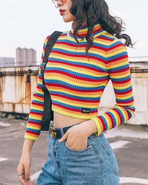 Coloured Cropped Turtleneck (1)