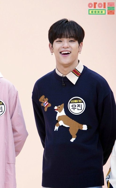 Dog Catching Bear Blue Sweater | Woojin – Stray Kids