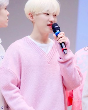 Pink Ribbed Collar And Hem Sweater | Hoshi – Seventeen
