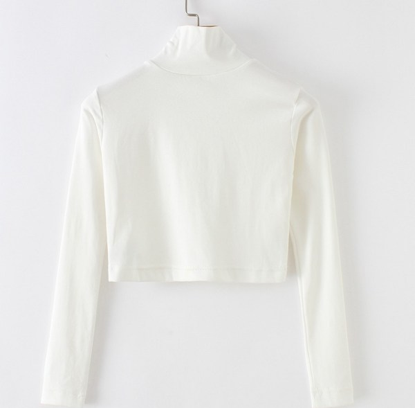 Black Long Sleeve High Neck Crop Top  | Jennie – Blackpink