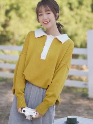 Plain Beige Loose Polo Collar Sweater (11)