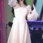 Beige Mesh Fairy Dress   IU