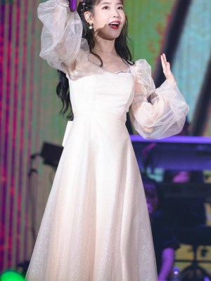 Beige Mesh Fairy Dress | IU
