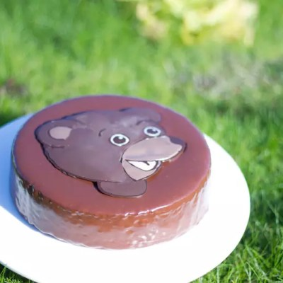 Little Brown Bear cake (image transfer technique)