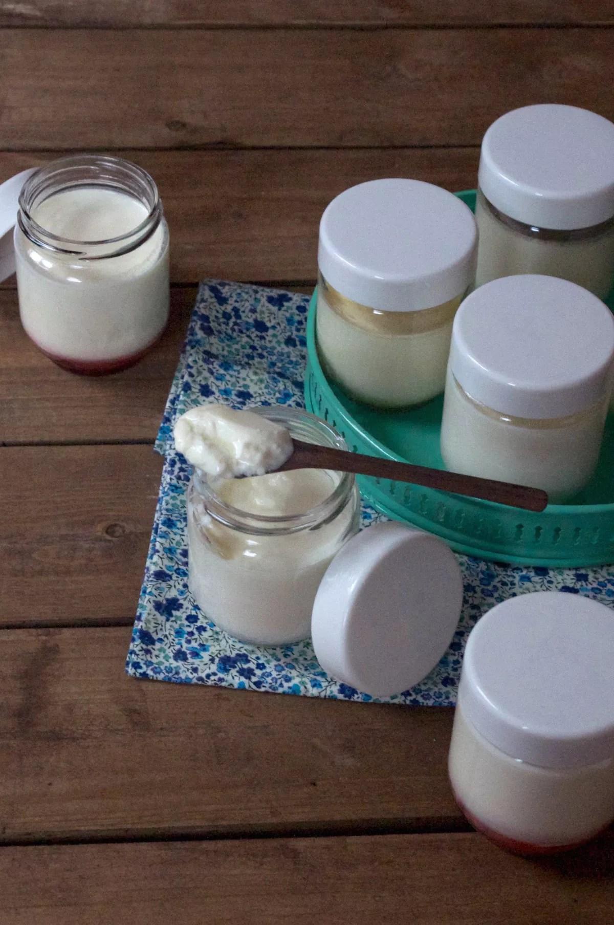 Yaourts maison à la yaourtière ou au Cook Expert