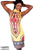 Dashiki / Angelina Print Sleeveless Turtle Neck Dress