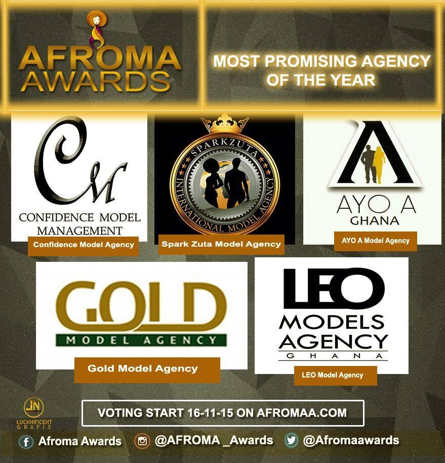 afroma awards (13)