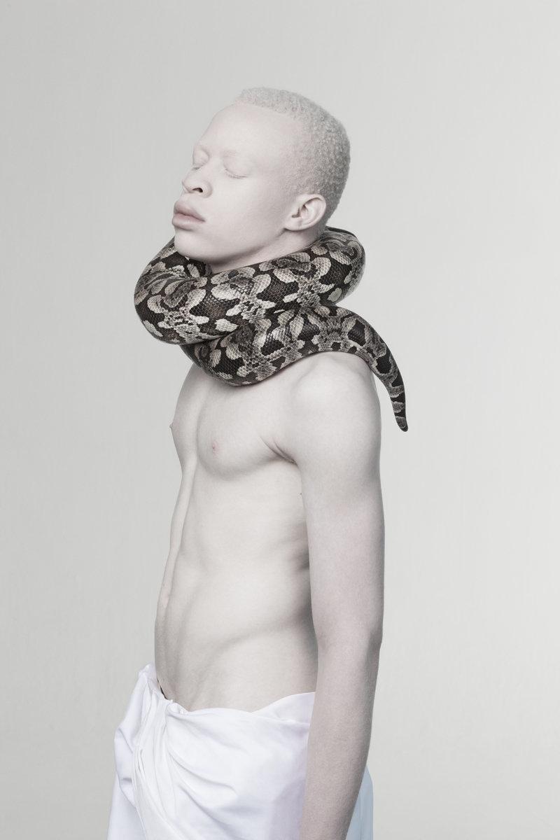 albino photography (10)