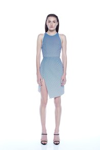 dion-lee-fall-winter-2014-3