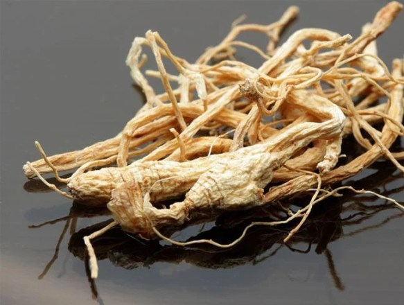 Ginseng as Natural Medicine For Memory Loss