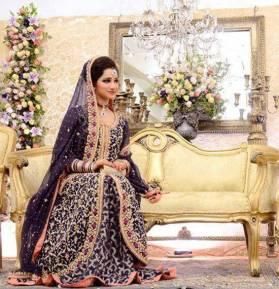 2014 Fashion Dresses For Walima 2014 Fashion Dresses In Pakistan 2014 Fashion Dresses In Pakistan 2014 Pakistani Fashion Dresses For Walima