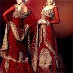 Pakistani Wedding Dresses 2014 For Bridal Pakistani Wedding Dresses 2014 For Bridal Bridal Wear Collection Pakistani Bridal and Wedding Dresses 03