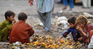 world 800 million people are suffering from hunger around World 800 Million People are Suffering from Hunger Around l GHI GLobalHunger INdex Pakistan CAR AfricanRepublic Yemen Afghanistan Hungry 10 13 2015 200545 l