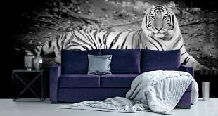 Fototapete mit Tiger