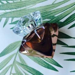 Fashion Voyeur by Pixie Tenenbaum Mont Blanc Lady Emblem Elixir