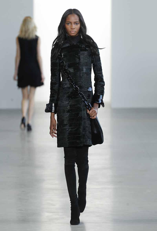 Calvin Klein Collection F15 (16)