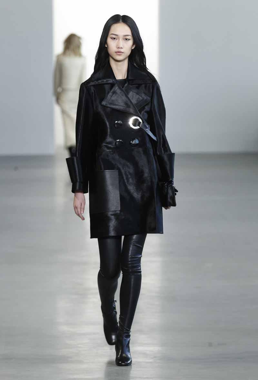 Calvin Klein Collection F15 (22)