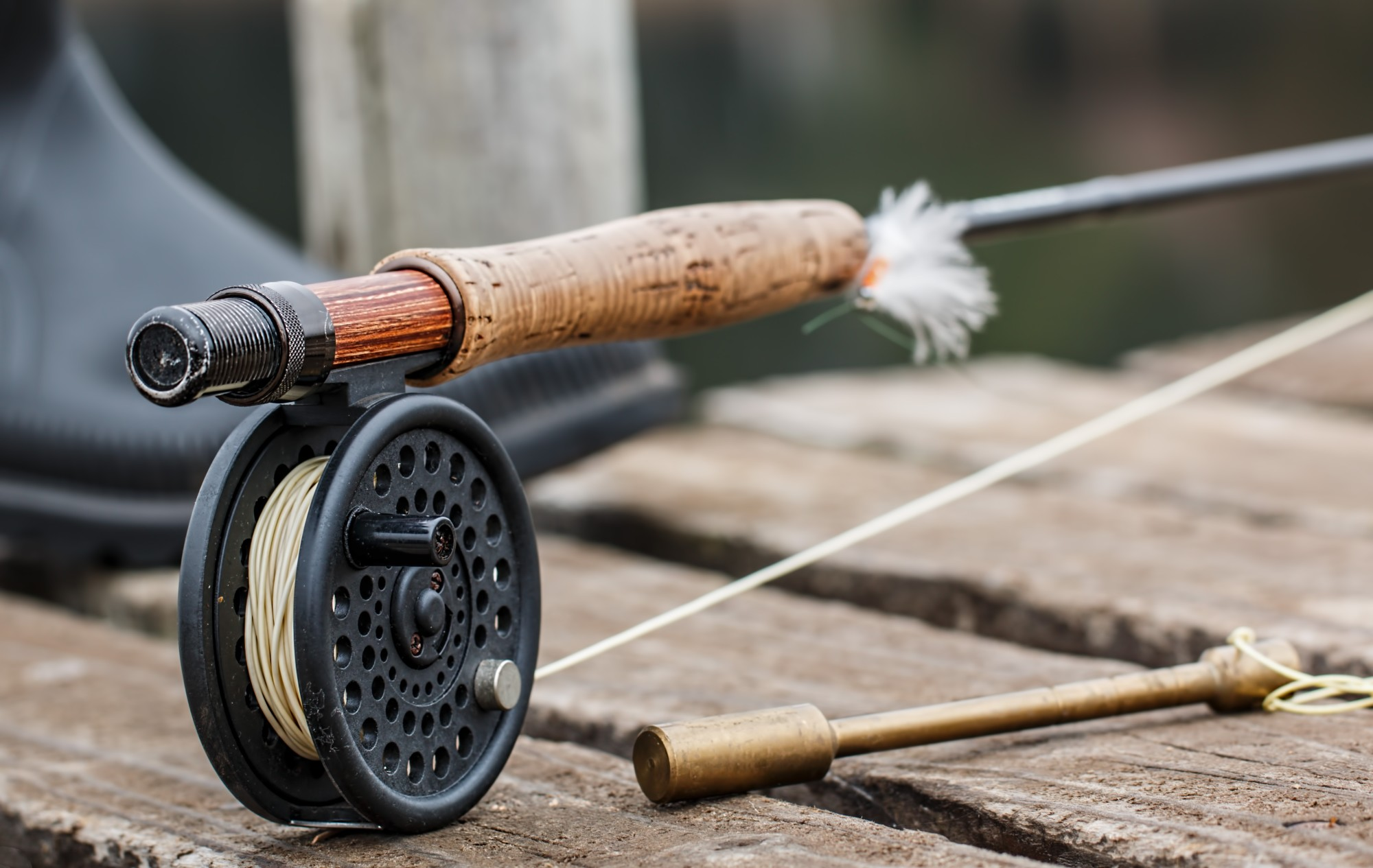 3 Must Have Fishing Tools for Beginners