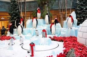 Bellagio Conservatory Holiday Display