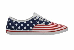Vans Customs_AuthenticLoPro_StarsStripes