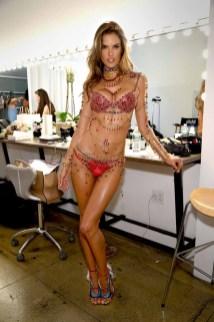 Victorias Secret Fantasy Bra Fit LV (15)