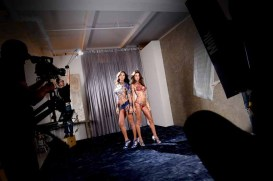 Victorias Secret Fantasy Bra Fit LV (19)
