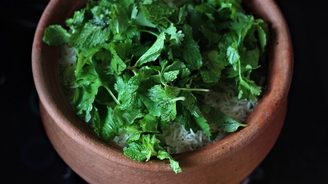 mint and coriander leaves added to rice