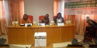 agriculture-reunion-acteur-filière-manioc