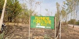 FORET-DE-KUA