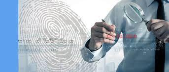 Innovadores Servicios De Investigación Internos Y Externos