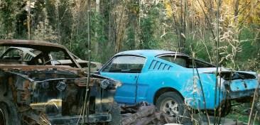2006_1965 Fastbacks