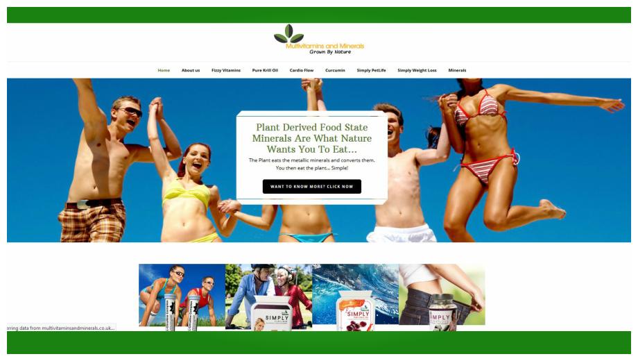 Multi Vitamins and Minerals Web Banner
