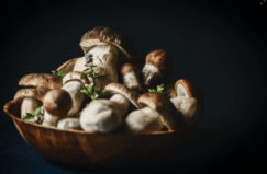 mushrooms in a bowl